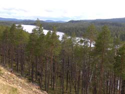dorf finnland kakslauttanen
